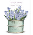 vintage lavender bouquet spring vector image