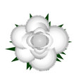 white rose icon vector image vector image