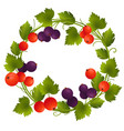 wreath with red and black currant vector image vector image