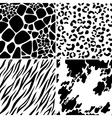 animal skin seamless patterns vector image