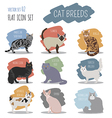 Cat breeds icon set flat style vector image