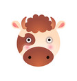 cute spotted cow face baby animal head vector image