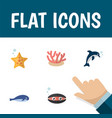 flat icon marine set of sea star playful fish vector image vector image
