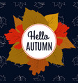 hello autumn banner with color leaves and maple vector image vector image