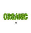 organic made of green grass vector image