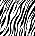 skin zebra vector image