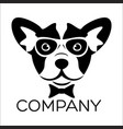 smart dog logo vector image