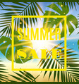 summer sale banner with palms and sun vector image vector image