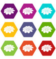 bright flower icons set 9 vector image vector image