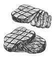 food meat steak roast set hand drawn vector image