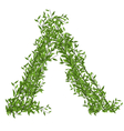 Hut of Branches Bamboo with Green Leafs vector image vector image