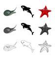 isolated object of sea and animal icon collection vector image vector image