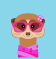 meerkat girl portrait with pink glasses and scarff vector image
