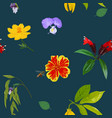 seamless pattern colorful realistic flower on vector image vector image