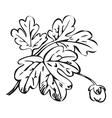 Floral bush retro black on white hand drawn vector image vector image