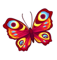 graphic butterfly vector image