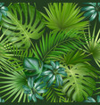 seamless tropical pattern with palm leaves for vector image vector image