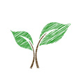 seedling sketched vector image
