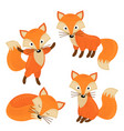 set of isolated cute foxes part 2 vector image vector image