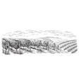 vine plantation hills trees clouds vector image vector image