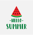 summer with watermelon vector image