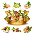 3d realistic set of different nuts vector image vector image