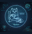 astrology neon aquarius zodiac sign funny cat
