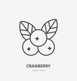 cranberry flat line icon forest berry sign vector image