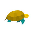 cute turtle toy turtle icon vector image vector image