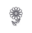 daisy line icon concept daisy flat sign vector image vector image