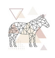 geometric zebra polygonal zebra vector image vector image