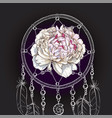 hand drawn ornate dreamcatcher gently pink peony vector image vector image