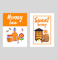 honey banners set with honeycombs and jars full of vector image