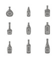 icon set with alcohol bottles vector image vector image