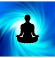 power of yoga vector image
