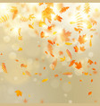 abstract autumn banner template with colorful vector image