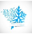 snowflake with debris vector image