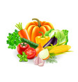 vegetables on white background vector image vector image