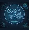 astrology neon capricorn zodiac sign funny cat