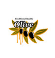 olives branch icon for olive oil product vector image vector image