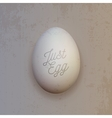 Realistic white chicken Egg vector image