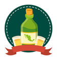 tequila bottle with cups icon vector image