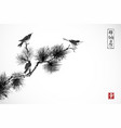 two birds on pine tree branch traditional vector image vector image