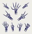 skeleton hands signs on grey background vector image
