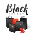 Black Friday Sale Shopping Bag Promo Abstract vector image