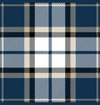 blue and black tartan plaid seamless pattern vector image vector image