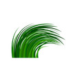 high green grass waving in the wind wild herb vector image