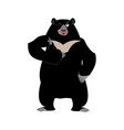 himalayan bear thumbs up and winks cheerful wild vector image vector image