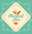 label for herbal tea with sprig of tea and teapot vector image vector image