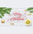 merry christmas holiday golden decoration on xmas vector image vector image